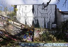 Zoo Project (Ruepestre) Tags: streetart paris france graffiti graffitis zooproject
