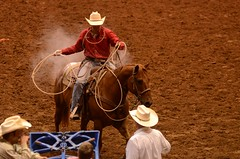 Think You Used Enough Powder There, Butch? (Get The Flick) Tags: rodeo roper perryga georgiahighschoolrodeoassociation georgianationalfairgroundsandagricenter southeasternshowdown