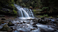 Liffey Falls Pano (RoosterMan64) Tags: longexposure panorama water landscape flow waterfall australia panoramic liffeyfalls waterflow