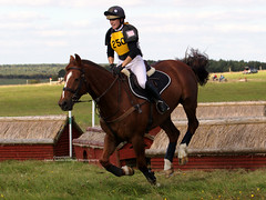 Class 3 - Novice. (David James Clelford Photography) Tags: uk horses sport crosscountry xc wiltshire rider equestrian nibbler larkhill huntertrials tedworthhunt rosannafiddes competitor250 class3novice