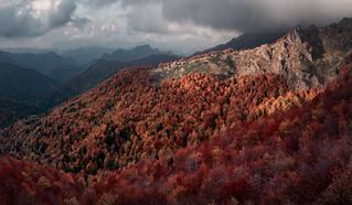 National park Central Balkan Mountains