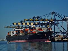 NYK Lodestar (J.M. Suchan) Tags: ship container containership lodestar nyk merchantship nyklodestar yusenterminals d5jq4