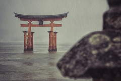 Itsukushima (CARLORICCI) Tags: rain statue japan tokyo nikon buddha jr hiroshima miyajimaisland miyajima daibutsu carlo nikkor torii giappone isola itsukushima    buddhismo japanrailpass  tky bugaku palafitte preghiere ootorii jdosh nikond810 17metri nikkor2470mmf28gedafs copyright carloricci  riccarlo carl ocarlo bunsha santuariodiitsukushima amidismo deacustodedeimari patrimoniodellumanitdellunesco tempiodidaishoin mareinternodiseto estremitnordoccidentale baiadihiroshima legnodicanfora