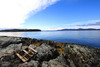 Grindle Point, Islesboro, Maine (Erica Robyn) Tags: ocean water island maine coastal islesboro islesboromaine grindlepoint