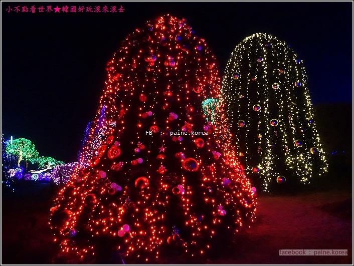晨靜樹木園 五色星光庭園展 (40).JPG