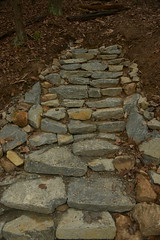 DSC_6214 (Gary Streiffer) Tags: stairs blueridgeparkway stonestaircase