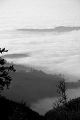 View from Schauinsland VIII (ericgrhs) Tags: schauinsland freiburg breisgau schwarzwald blackforest badenwrttemberg mountain clouds cloudy landscape
