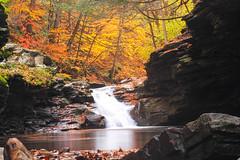 Rock Run, Ralston, PA (danstambaugh) Tags: nature hiking pa rock run outside stream fall patnc dcnr