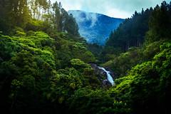 Surathali Falls (kasun_ranaweera) Tags: waterfall landscape landscapes mist srilanka uva hillcountry hills water sunrise morning rain nikon kitlense d3200 wet