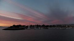 Berkeley marina sunset (lenswrangler) Tags: rawtherapee digikam lenswrangler berkeley berkeleymarina marina boat yacht harbor sunset clouds birds sky water