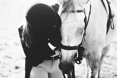 (suzcphotography) Tags: horse equine monochrome love hug shoe equestrian hunter jumper thoroughbred girl rider canon 50mm