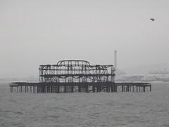 Brighton, United Kingdom (Shaun Smith-Milne) Tags: oiseau seagull industry industrie eastsussex sussex royaumeuni unitedkingdom westpierbrighton wreck lamanche englishchannel brightonandhove jetée pier
