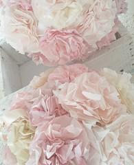 Paper roses beauties Wedding paperart roses..#wedding #weddingday #weddinginspiration #beauty #dream #madewithlove #handmade #happy #shabbychic #paperart #flowers #paperflowers #weddingcenterpiece #pearl #pearls #love #happyd (martina.rajhkokolek) Tags: weddingday weddinginspiration beauty dream madewithlove handmade happy shabbychic paperart flowers paperflowers weddingcenterpiece pearl pearls love happyday happylife