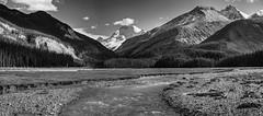 Sunwapta River (John Payzant) Tags: panorama hdr alberta canada sunwapta river jasper park