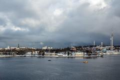 10112016-IMG_9099.jpg (thehikingzebra) Tags: neige stockholm sude