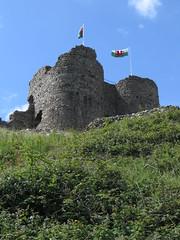 Criccieth Castle (Dubris) Tags: wales cymru gwynedd criccieth castle cadw ruin fortification architecture building