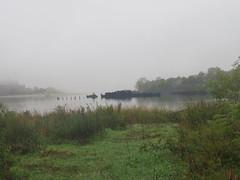 Barges, Foggy Morning, Dreier-Offerman Park, Brooklyn, NY, 11228 (tpreston87) Tags: kings fog