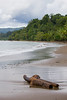 Costa Rica (jorge.cancela) Tags: costa rica corcovado