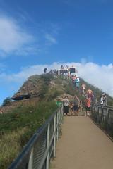 IMG_1318 (michelleingrassia) Tags: diamondhead volcano hike oahu hawaii