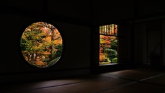 The window of Realization , The window of Delusion (maco-nonchR) Tags: genkoan    window temple kyoto kioto takagamine  zen garden