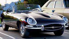 Jaguar XKE Roadster (Pat Durkin OC) Tags: jaguar xke roadster