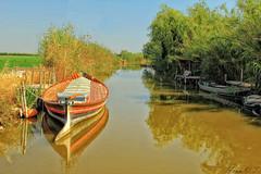 Albufera (cazador2013) Tags: laguna barca maleza cielo campos agua arboles botes caas albufera valencia