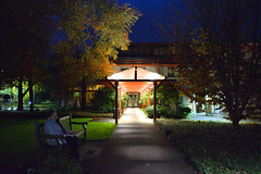 After dark - HBM! (JSB PHOTOGRAPHS) Tags: jsb0626 afterdark dark nightphotography sub sidewalk bench happybenchmonday benchmonday nikon d7100 1755mm