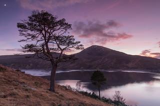 Loch Quoich ..