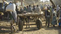 Etiopien - On the road (Göran Höglund (Kartläsarn)) Tags: nikon rosa ethiopia d800 2014 bussarna rosabussarna pinkcaravan etiopien kartläsarn kartlasarn göranhöglund
