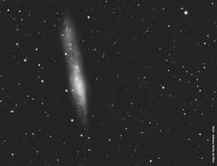 NGC 55 (amottasilva) Tags: equinox astrometrydotnet:status=solved ngc55 neq6 qhy21 astrometrydotnet:id=nova1254826