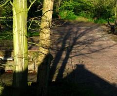 IMG_1939 St.Lioba Egmond: Schatten (Traud) Tags: shadow holland monastery netherland schatten kloster niederlande benediktinerinnen stlioba