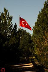IMG_4414 (enisdumrul) Tags: canon cumhuriyet bayrak tepe 2015 niversitesi c canoneos700d