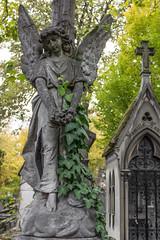 Pre Lachaise Cemetery (michael_hamburg69) Tags: sculpture friedhof paris france cemetery angel frankreich ange cementerio skulptur engel prelachaise cimetire gottesacker photowalkwithaddadada camposato weekendwithjoseph