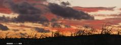 Atardecer en Jos Ignacio (Javier Calleja 19:7) Tags: sunset sea sky costa beach clouds landscape faro uruguay atardecer coast mar dunes paisaje carnaval montevideo dunas uy martimo dunegrass 197 hierbas ammophila josignacio farodejosignacio 19a7