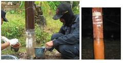 jasa-perbaikan-tiang-listrik-wilayah-sumatera-selatan-jambi-dan-bengkulu-2008-1 (ramdhanijaya) Tags: tiang listrik perbaikan