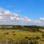 Panorama Noordhollands Duinreservaat, Castricum, Netherlands - 2951 thumbnail
