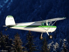 1946 Cessna 120 [N77480] (B737Seattle) Tags: 120 alaska plane private airplane flying airport nikon general aircraft aviation flight juneau international valley coolpix cessna mendenhall 1946 jnu 2015 p510 pajn