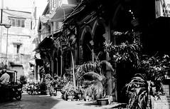 The street (JBB | MK00) Tags: voyage leica morning travel blackandwhite white black film 35mm blackwhite asia southeastasia rangefinder vietnam fujifilm asie 100 manual southeast m3 hochiminhcity acros100 2015 leicam3 summicron50mmf2