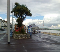 On the seafront (southglosguytwo) Tags: sky signs tree beach wet water clouds buildings sand september promenade dorset seafront cameraphoneshot 2015 weymouthportland variouspeople