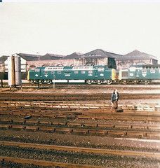 55009 Gateshead (British Rail 1980s and 1990s) Tags: br britishrail loco locomotive train rail railway livery ee englishelectric type5 diesel deltic 55 class55 ecml eastcoastmainline mainline er easternregion gd depot tmd blue 55009 alycidon 55007 pinza 9007 9009 d9007 d9009 80s 1980s liveried shed brel britishrailengineeringltd
