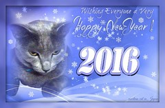 Megumi's Wishing Everyone a Very Happy New Year! 2016 (martian cat) Tags: russianblue newyears kitty kittycat cat pet ©martiancatinjapan allrightsreserved© happynewyear glücklichesneuesjahr omedettogozaimasu ハッピーニューイヤー 明けましておめでとうございます bonneannée felizañonuevo buonanno macro megumi ©allrightsreserved martiancatinjapan© martiancatinjapan cards merrychristmas motivational joyeuxnoël fröhlichiwiehnacht kurisumasuomedeto feliznavidad メリークリスマス buonnatale motivationalposter inspirational collectibles hobbies ☺allrightsreserved allrightsreserved caption captioncollection christmas christmasmemories ☺martiancatinjapan martiancat creativity