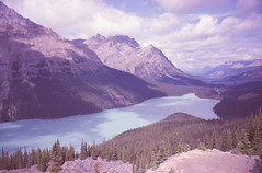 (reteris) Tags: film 35mm expired banffnationalpark peytolake mjuiiiwide100 polaroidhd800