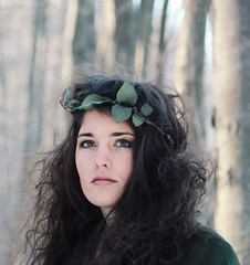 Green leaves in winter woods (Nicole Cochis Photography) Tags: winter portrait beautiful leaf woods crown apathy staark