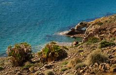 [ #91 :: 2015 ] (Salva Mira) Tags: sea mar andalucia andalusia almeria cabodegata salva genoveses playadelosgenoveses salvamira salvadormira