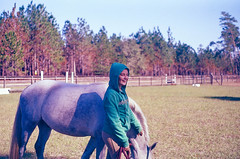 (unctura) Tags: film analog 35mm photography pentaxmesuper equine horsesonfilm