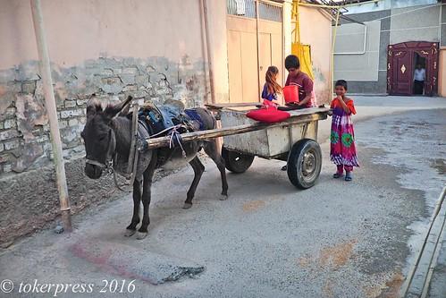 L_Uzbekistan_-0557