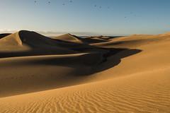 Dunes (Bjrn-Kristian) Tags: nikon d5 2470 vr
