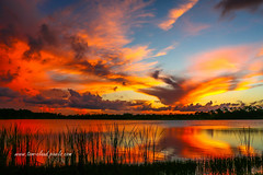 Colorful Fort Pierce Sunset (tclaud2002) Tags: sky sun sunset clouds cloudy pond lake water landscape nature georgelestrange preserve fortpierce florida outdoors outside usa