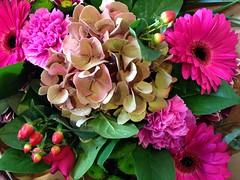 Bouquet (rvanbaalen) Tags: flowers flower