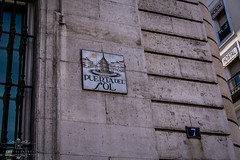 Puerta del sol (Elisabeth Martnez Cnovas) Tags: madrid parquedelretiro elretiro plazamayor puertadelsol palacio de cristal jardines puerta alcala